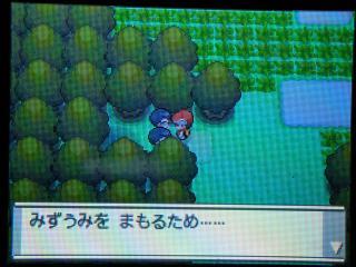 pokemon-002.jpg