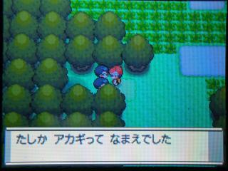 pokemon-004.jpg